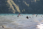 Pellaifa: bosque hundido y playa escondida