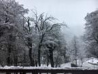 Vacaciones de invierno 1: nieve y vino, la preparación del viaje